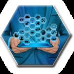 Programme & Project Management